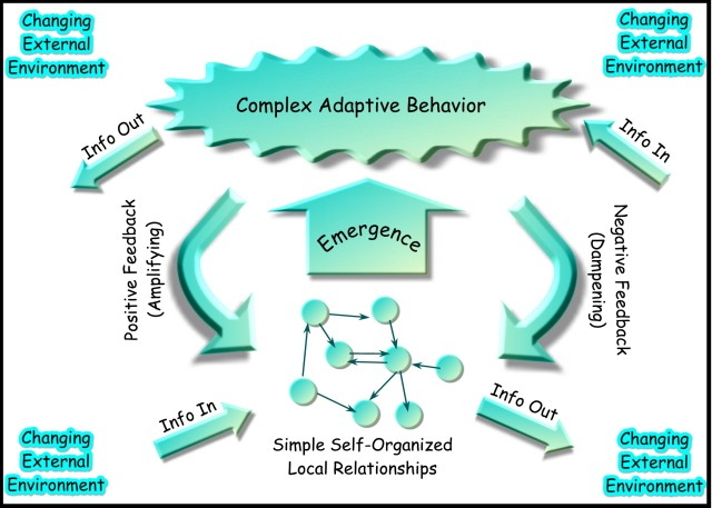 Complex-adaptive-system